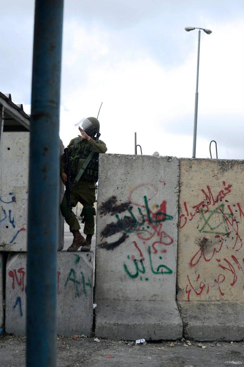 palestine 2