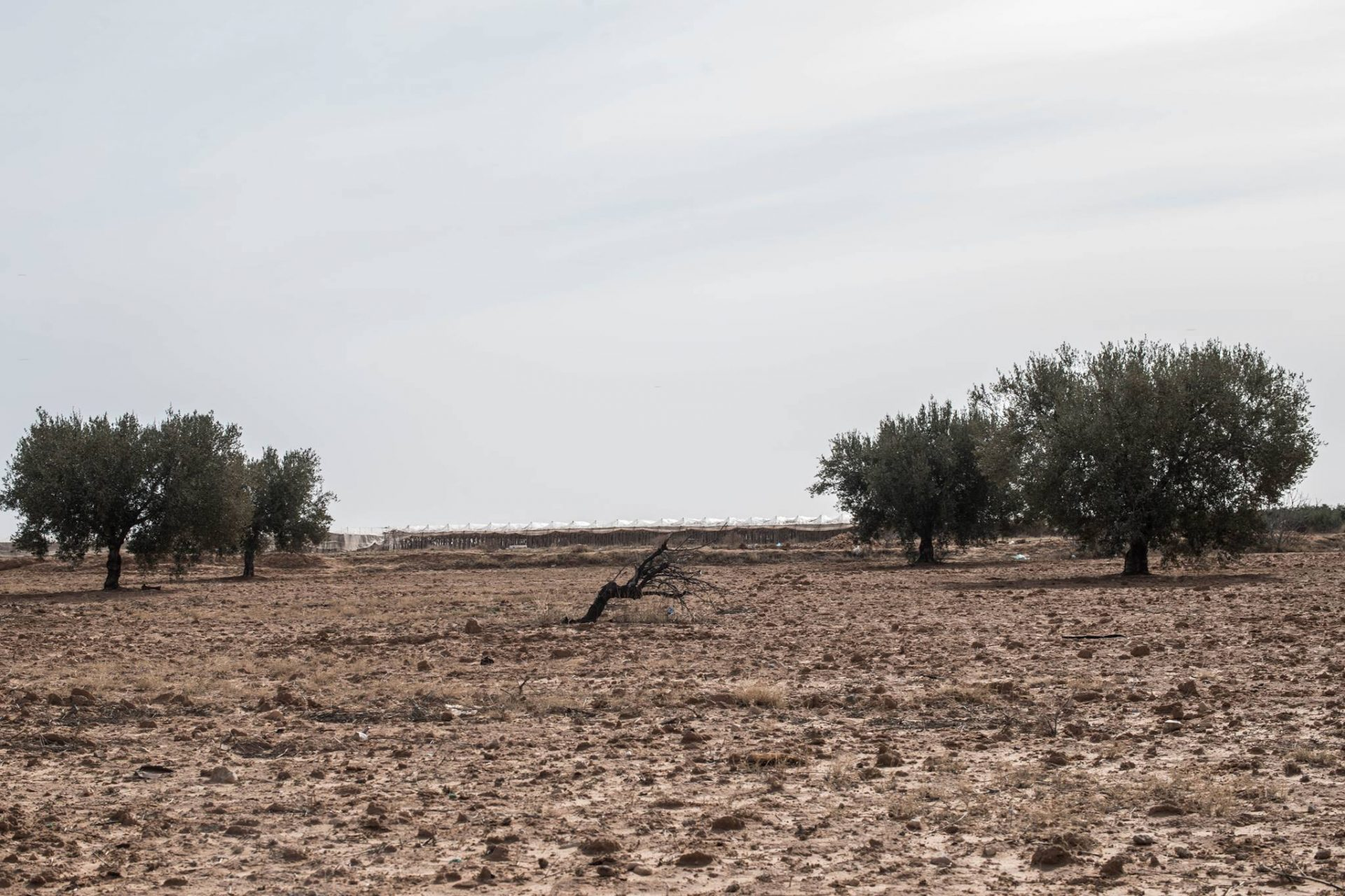 Tunisia: pollution and drought